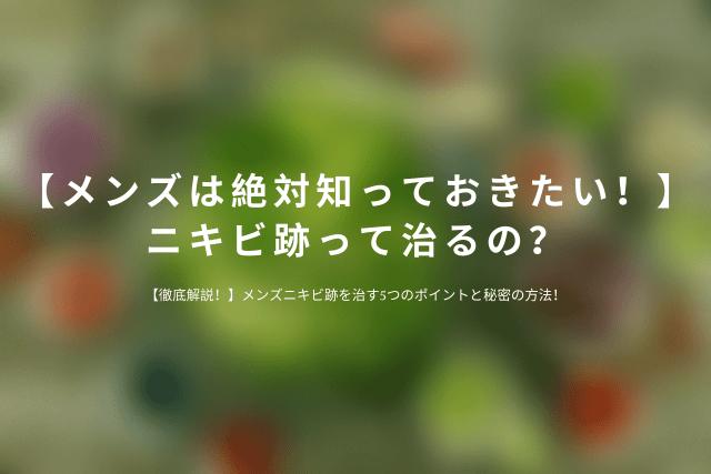 【メンズは絶対知っておきたい!】ニキビ跡って治るの?.